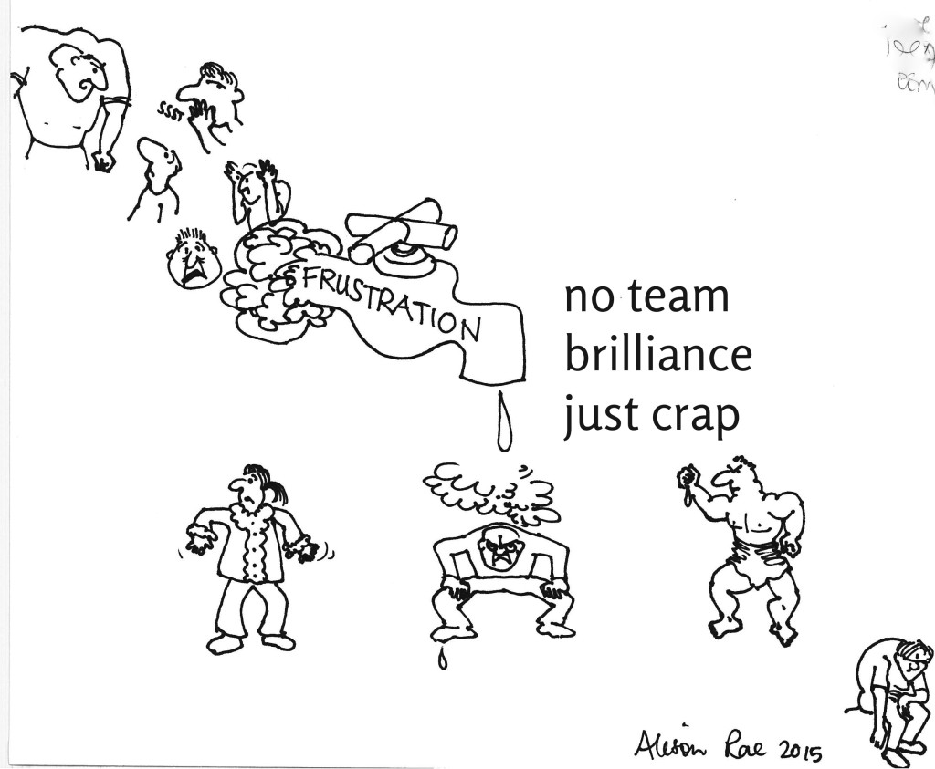 no team brilliance